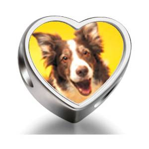 Pandora Border Collie Dog Heart Photo Charm smaller image