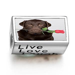 Pandora Chocolate Labrador Live Love Laugh Photo Charm