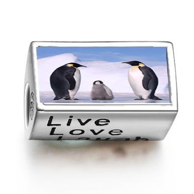Pandora Cute Penguins Live Love Laugh Photo Charm