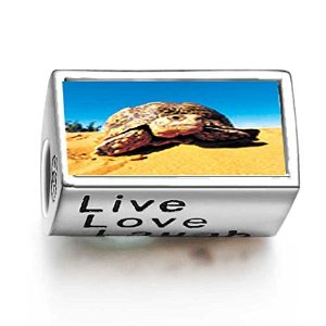 Pandora Desert Turtle Photo Charm