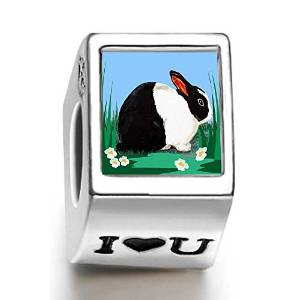 Pandora Dutch Rabbit Photo I Love U Charm