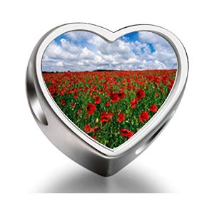 Pandora Field Of Poppies Photo Charm