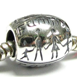 Pandora Love Together Forever Happy Family Charm