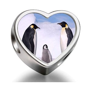 Pandora Penguin In Antarctica Heart Photo Charm