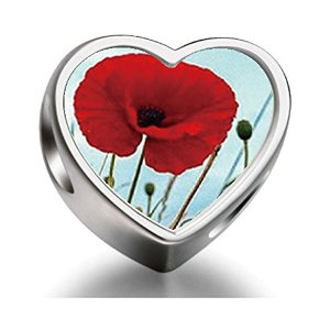 Pandora Red Poppies Heart Photo Charm
