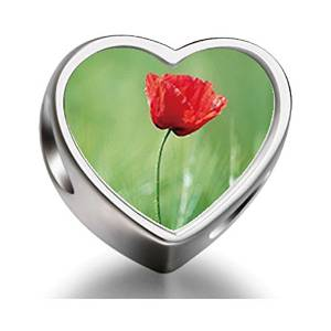 Pandora Shirley Poppy Photo Charm image