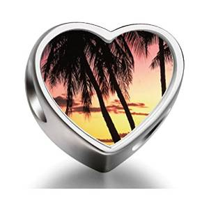 Pandora Tropical Palm Tree Heart Photo Charm