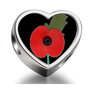 Pandora Veterans Memorial Poppy Heart Photo Charm